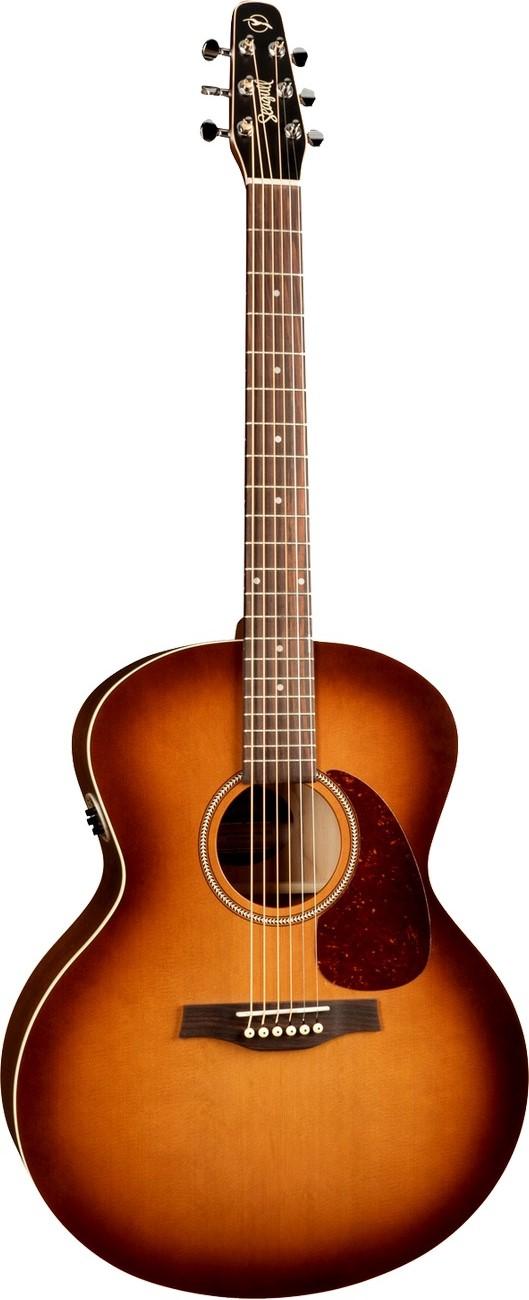Акустическая гитара Seagull Entourage R…