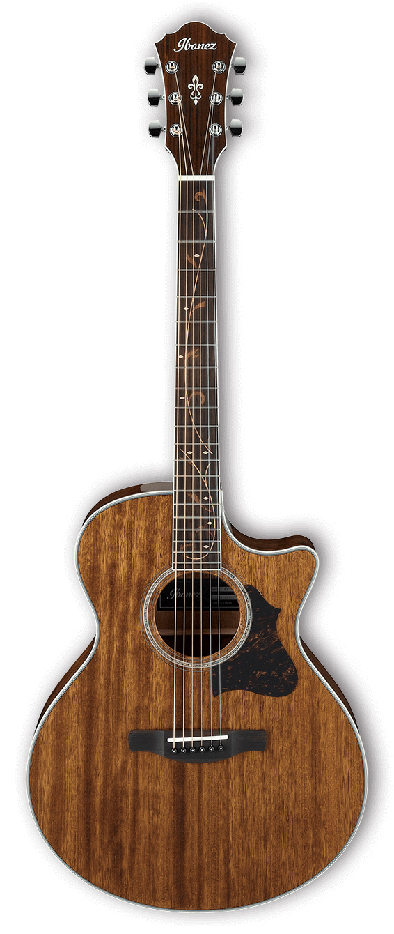 Акустическая гитара Ibanez AE245-NT