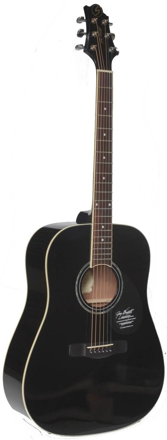 Акустическая гитара Greg Bennett GD 100 S BK