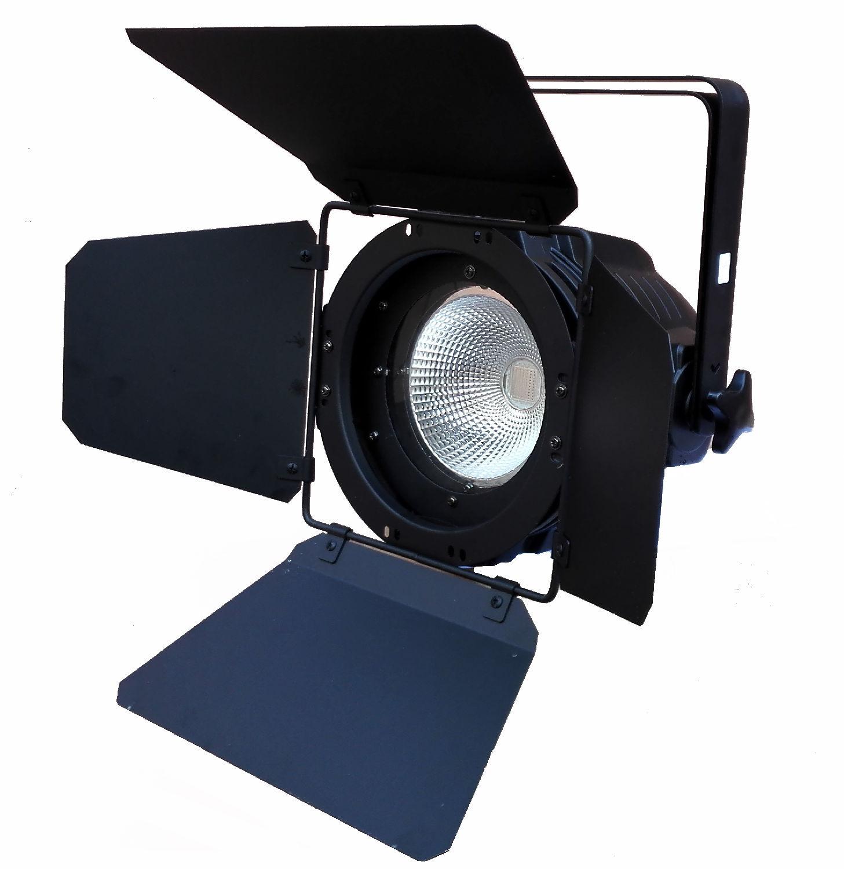 Pro Svet Light PAR COB 90 CW