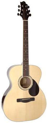 Акустическая гитара Greg Bennett GOM100S/N