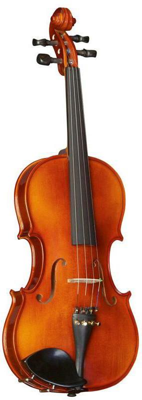Скрипка Strunal 16W-1/2