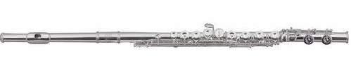 Флейта Roy Benson FL-602RІ