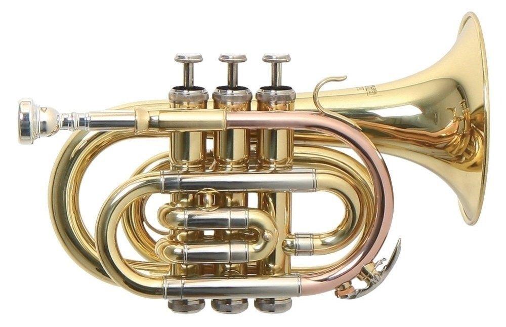 Труба Roy Benson PT-302