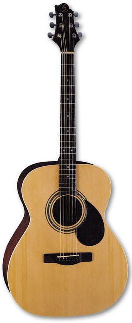 Акустическая гитара Greg Bennett OM2/N
