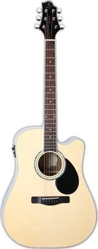 Акустическая гитара Greg Bennett GD101S…