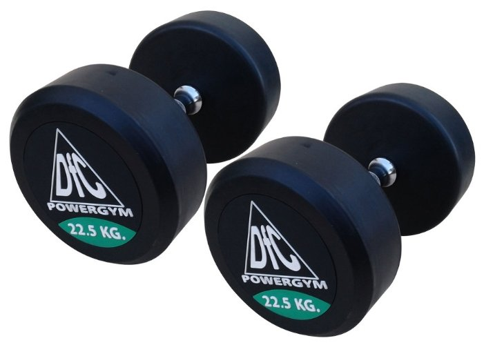 DFC Powergym DB002-22.5 пара по 22,5 кг