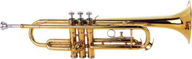 Труба Maxtone TTC-102
