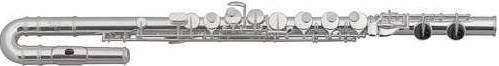 Флейта Roy Benson АF-602E2