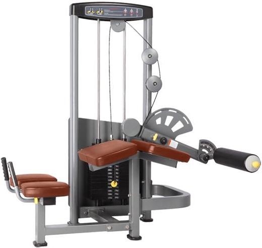 Bronze Gym D-013A