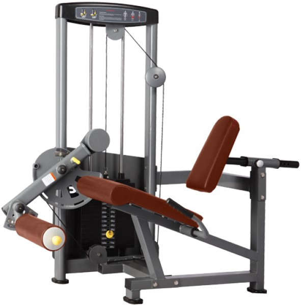 Bronze Gym D-014