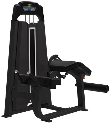 Bronze Gym LD-9001