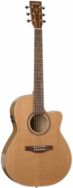 Акустическая гитара Simon&Patrick CWGT …