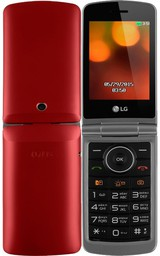 LG G360 DS Red