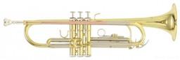 Труба Roy Benson TR-202 Bb