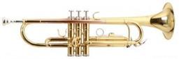 Труба Roy Benson TR-101 Bb