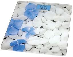 Напольные весы BBK BCS3002G White/Blue