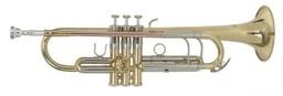Труба Roy Benson TR-403 Bb