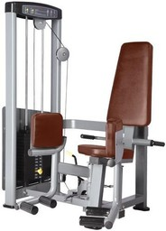 Bronze Gym D-019