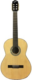 Гитара Rockdale Modern Classic ...