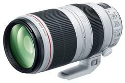 Canon EF 100-400mm f/4.5-5.6L I...