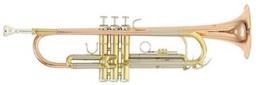 Труба Roy Benson TR-202G Bb