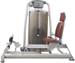 Bronze Gym A9-017