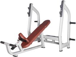 Bronze Gym H-025