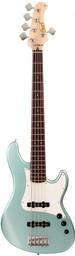 Бас-гитара Cort GB55JJ-SPG GB Series