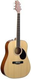 Акустическая гитара Greg Bennett GD-60/N