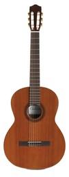 Гитара Cordoba Iberia C5
