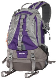 Vanguard Kinray 43PR Purple