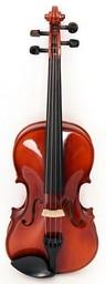 Скрипка Strunal 15W-1/4