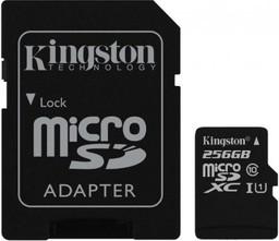 Карта памяти Kingston microSDXC 256GB...