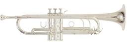 Труба Roy Benson TR-403S Bb