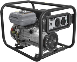 Электрогенератор Carver PPG-3900А Bui...