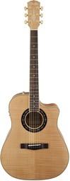 Акустическая гитара Fender T-Bucket 4...