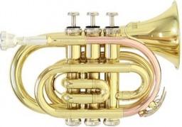 Труба Roy Benson PT-101 BB