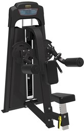Bronze Gym LD-9005
