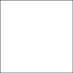Colortone 2.75x11m White Tone BDSV-2....
