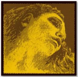 Pirastro 415091 Evah Gold Violin