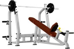 Bronze Gym J-025